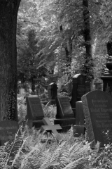 Historic Cemetary, 2011 | People of the 21st Century